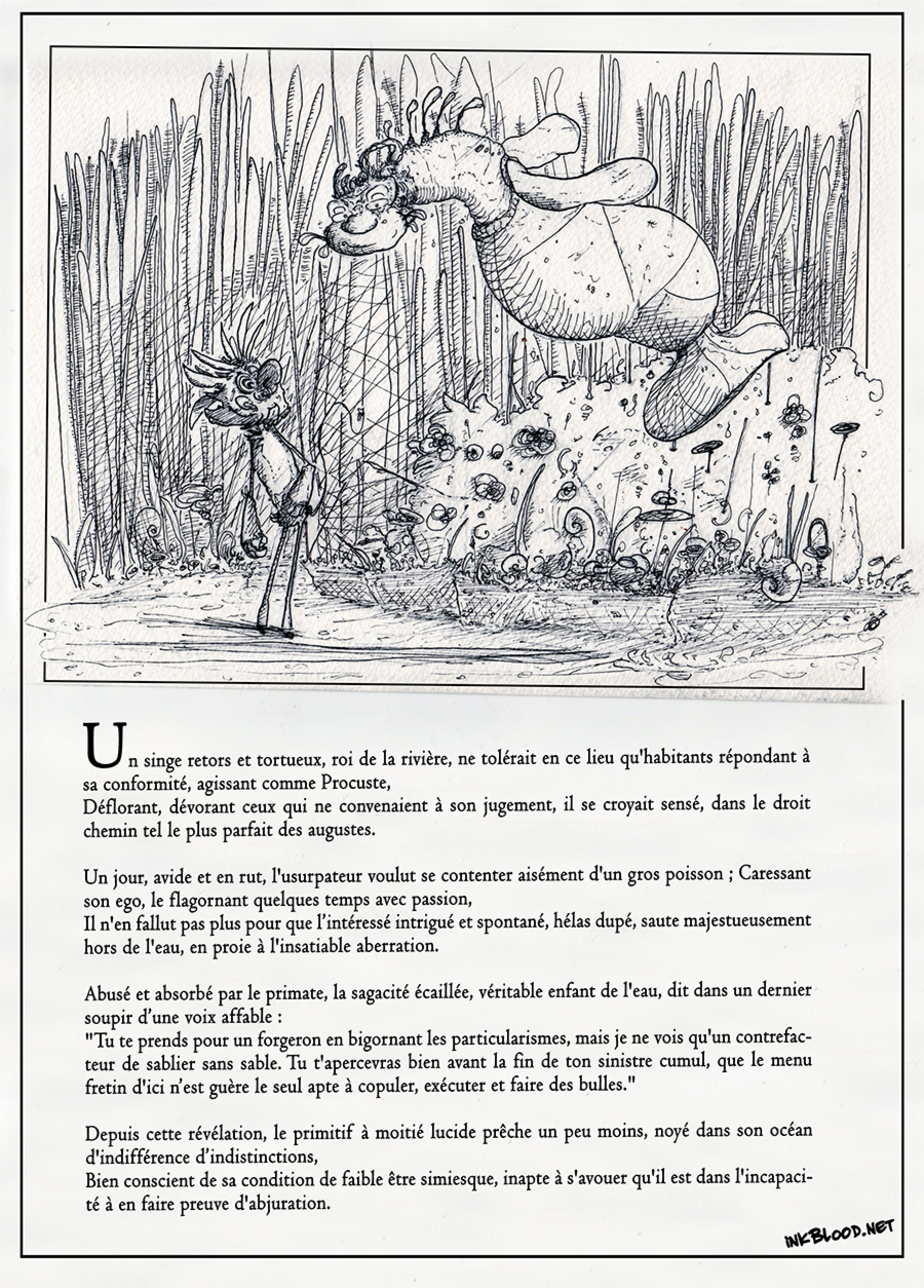 Le-Singe-et-le-Poisson