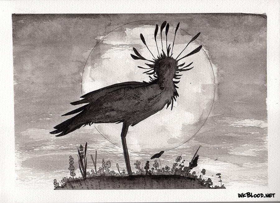 Oiseaux-Encre-Inkblood-3 Loin du froid