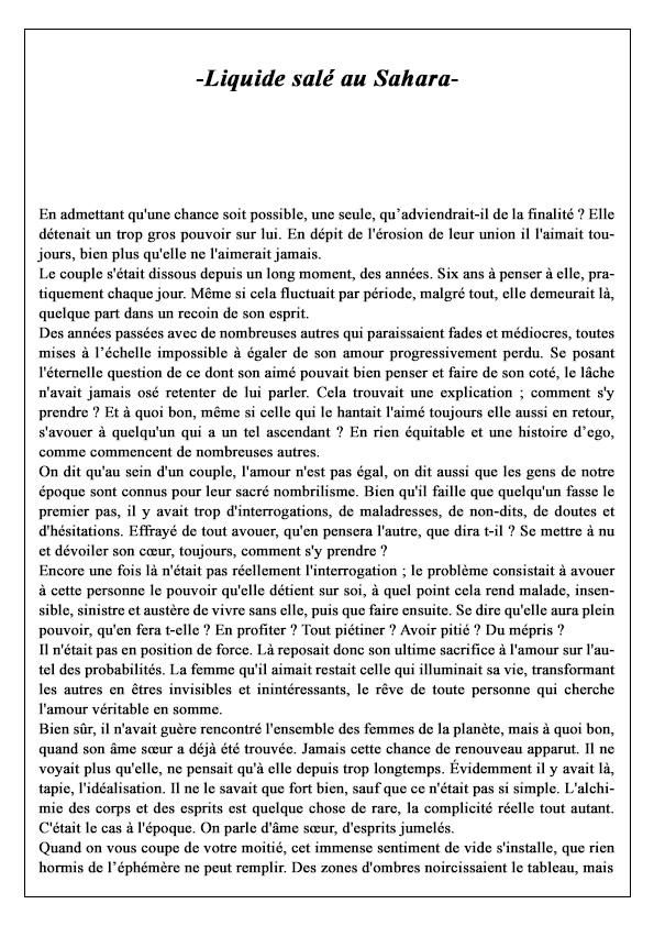 Liquide-salé-au-Sahara-P1